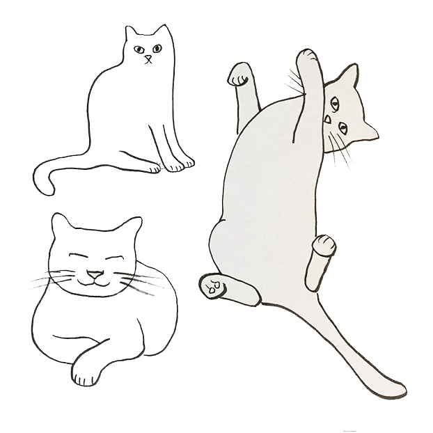 cats-illustration